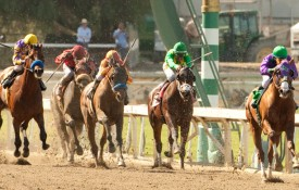 Showing His Mettle: The Near Legacy of California Chrome
