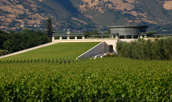 Napa Valley: A Synergy of Structure and Balance
