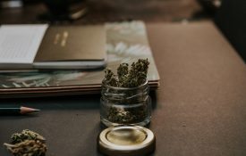 Cannabis Real Estate Lease and Risk Management Considerations