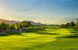 The Top 5 Golf Courses to Play in Scottsdale